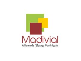 Madivial-1
